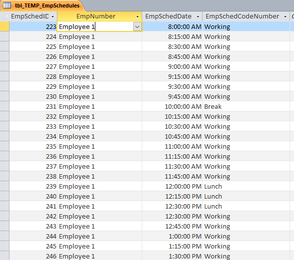 TEMP Employee Schedule Data.PNG